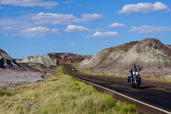 Desierto Petrificado, Ruta 66