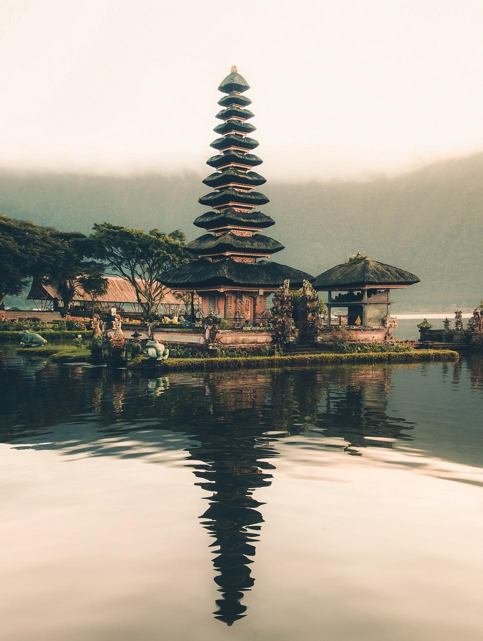Jungla Indonesia