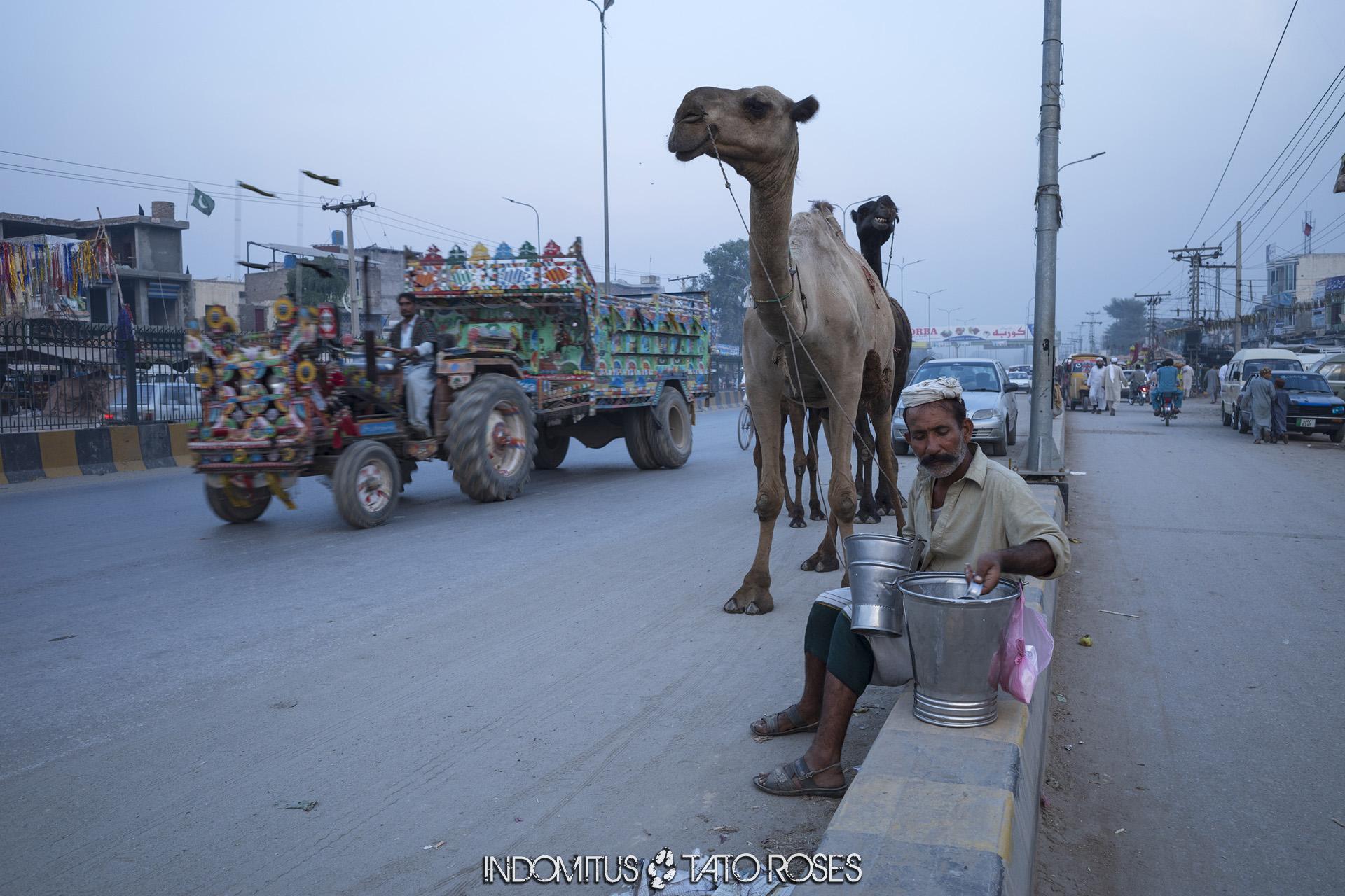 Pakistán Mercado entre Nihalpur y Peshawar
